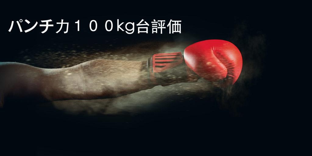 パンチ力100kg~199kgって強いの?弱いの?パンチングマシーンの数値を評価