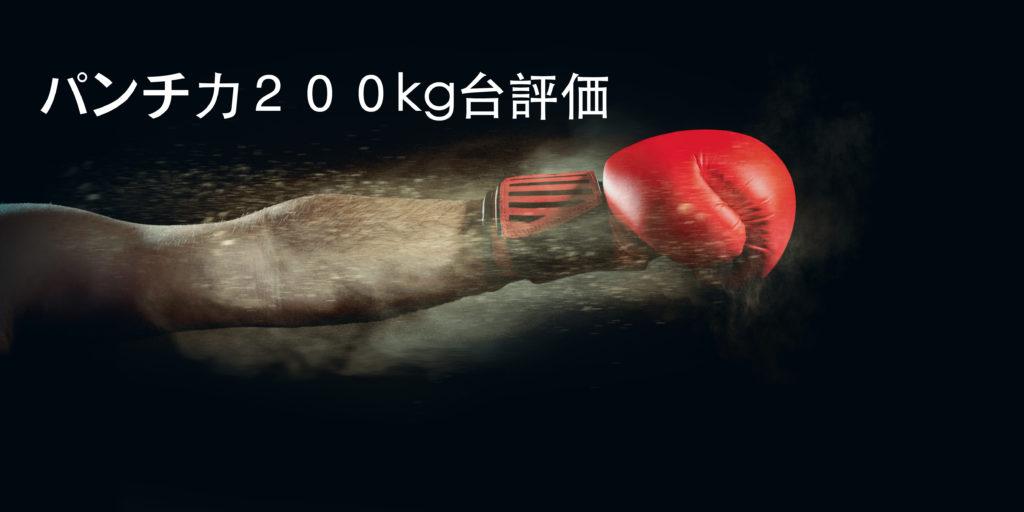 パンチ力200kg~299kgって強いの?弱いの?パンチングマシーンの数値を評価
