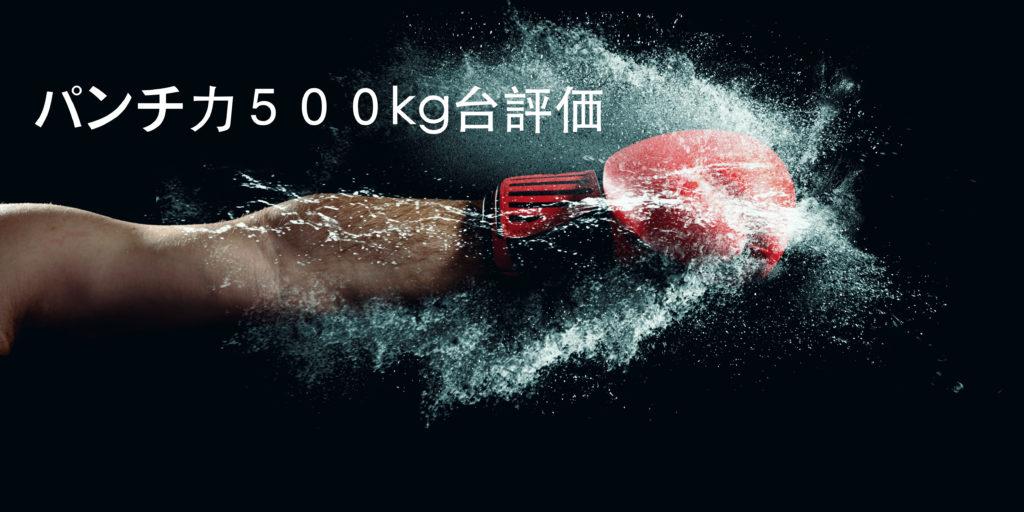 パンチ力500kg~599kgってどう思う?パンチングマシーンの数値を評価