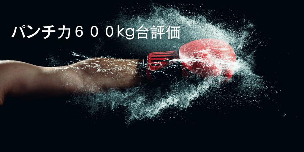 パンチ力600kg~699kgってどう思う?パンチングマシーンの数値を評価