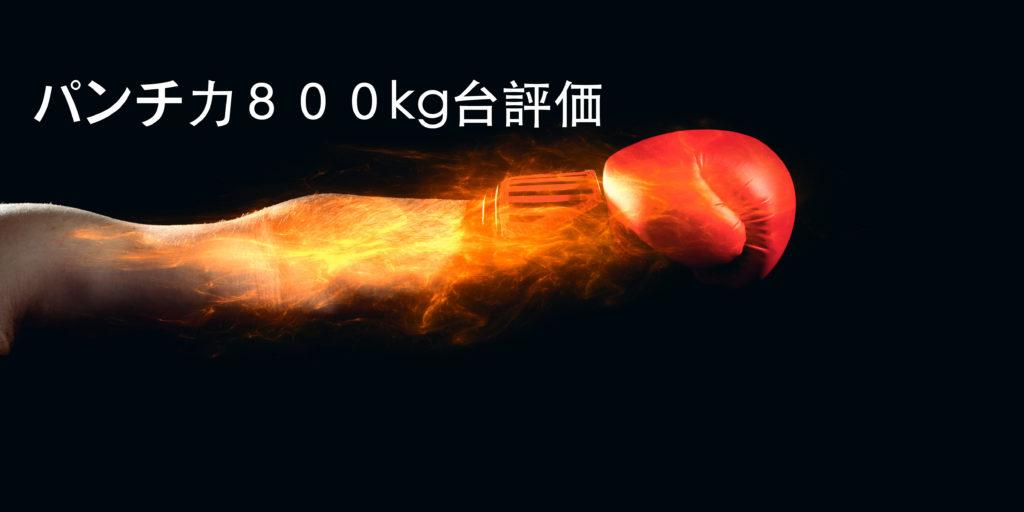 パンチ力800kg~899kgってどう思う?パンチングマシーンの数値を評価